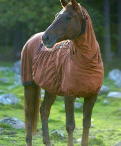 Boett Blankets