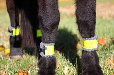 Horse leg Reflector